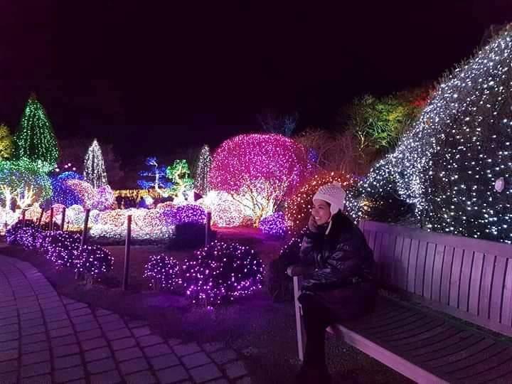 Garden of the Morning Calm Lights Festival