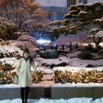Lotte Hotel Seoul Myeongdong