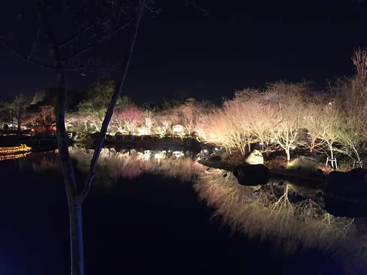 Nabana no Sato from Nagoya