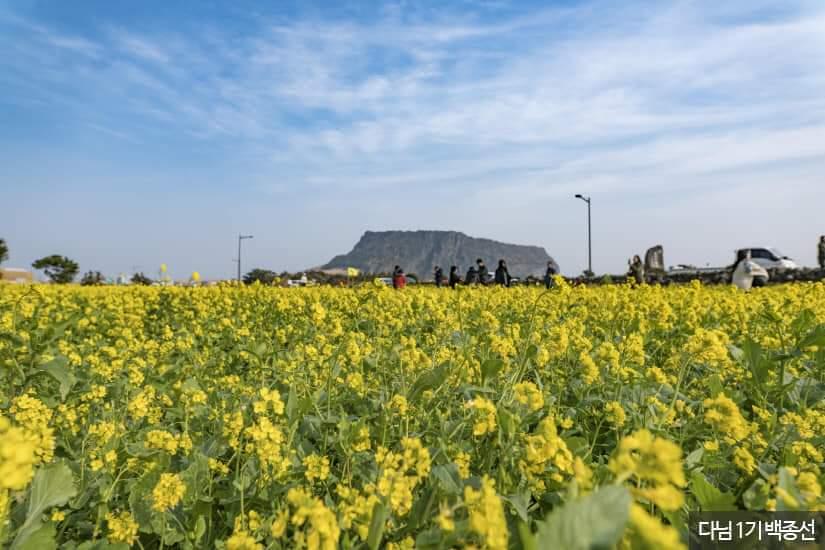 Jeju Island Tourist Zone