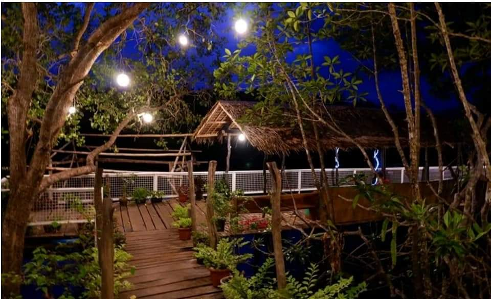 Watch Fireflies in Nagsaguipi River Puerto Princesa