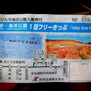Hitachi Seaside Park Ticket and Bus Combo
